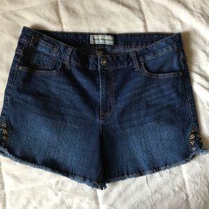 Bit & Bridle Denim Jean Shorts
